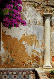 Ancient Column. Against a peeling rough wall with colorful flowers Stock Photography