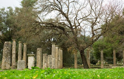 Ancient columns in Archea Olympia Royalty Free Stock Photos