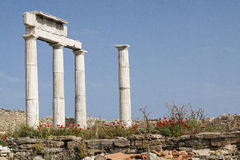Ancient columns in the archeologic site of Delos Royalty Free Stock Images