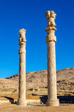 Ancient columns in the Gate of All Nations - Persepolis Royalty Free Stock Photo