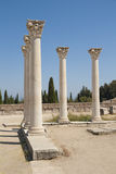 Ancient columns on Kos island, Greece Royalty Free Stock Photo