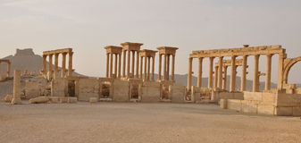 Ancient columns in Palmyra Stock Images