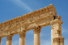 Ancient columns Palmyra, Syria stock images