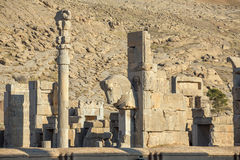Ancient columns in Persepolis city Stock Image
