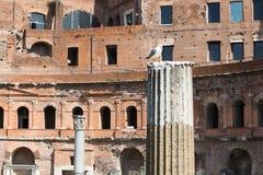 Ancient columns at the Trajan`s Market, Rome, Italy, Europe royalty free stock photo