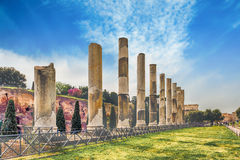 Ancient columns of the Temple of Venus, Rome, Italy Royalty Free Stock Photo