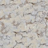 Ancient Wall Seamless Texture. stock image