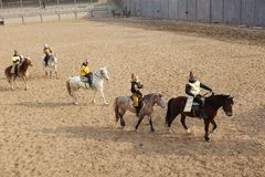 Horsemanship performance Stock Image