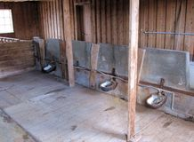 Ancient cow cubicles. Empty cow cubicles in an old abandoned stable Stock Photography