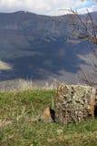 Ancient cross-stone khachkar in Armenia Stock Photos