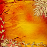 Ancient crumpled abstract background Stock Photography
