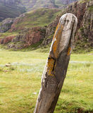 Altai: ancient deer stone Royalty Free Stock Images