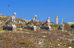 Ancient Delos island in Greece. The ancient terrace of the lions at Delos island in Greece Royalty Free Stock Image
