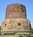Ancient Dhamekh Stupa in Sarnath,India Royalty Free Stock Images