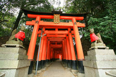 Ancient dog's statues in front of Torii corridor Stock Images