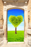 Ancient door and heart shape tree on green field Royalty Free Stock Images