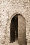 Ancient door Stock Photography