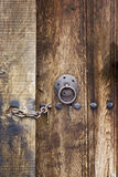 Ancient door Royalty Free Stock Photo