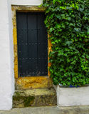 Ancient Door. In Portuguese style Stock Images