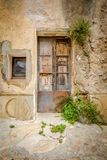Ancient door. Ancient wodden door boarded up with vegitation growing around Royalty Free Stock Photo