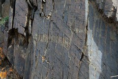 Ancient drawings. The ancient drawings on rocks Stock Image