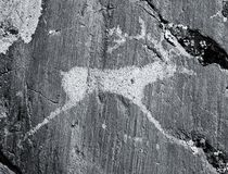 The ancient drawings on rocks Altai Stock Photography