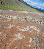 The ancient drawings on rocks Altai. The so-called Pazyryk culture. Stone Age. 1000 BC Stock Image