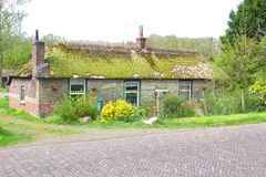Idyllic ancient Dutch cottage with mossy roof,NL Royalty Free Stock Photo
