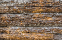 Ancient dwelling's wooden wall eaten by teredo Stock Photos