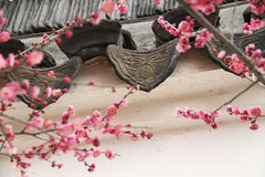 Ancient Eaves Tile and Peach Blossom. In a park, early spring Stock Photo