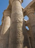Ancient egyptian hieroglyphic carvings on columns in temple royalty free stock images