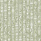 Ancient Egyptian hieroglyphic decorative background Stock Photo