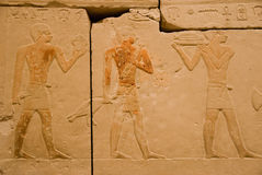 Ancient egyptian hieroglyphs 2. Egyption hieroglyphs - exhibition organized by the Art and historical Museum in Vienna royalty free stock photos