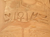 Ancient egyptian hieroglyps Royalty Free Stock Image