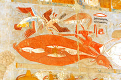 Ancient Egyptian Meat. Ancient Egyptian food, including ducks, beef, geese Stock Photos