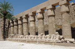 Ancient Egyptian Pillars Royalty Free Stock Images