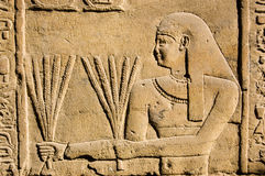 Ancient Egyptian Priest with Wheat Royalty Free Stock Photo