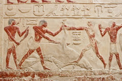 An ancient egyptian relief in Saqqara. Stock Image