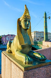 Ancient Egyptian sphinx, St Petersburg, Russia Royalty Free Stock Photography