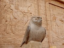 Ancient Egyptian statue of Horus God at the Temple of Horus also known as Edfu or Idfu. Edfu Temple is one of Egypt best destinations for tourists and is royalty free stock photo