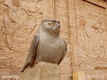 Ancient Egyptian statue of Horus God at the Temple of Horus also known as Edfu or Idfu. Edfu Temple is one of Egypt best destinations for tourists and is stock image