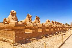 Ancient egyptian statues in Karnak temple Royalty Free Stock Photography