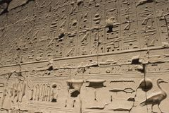 Ancient egyptian wall covered in hieroglyphics at Karnak temple Stock Photography