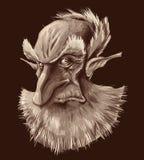 Ancient elf portrait vector illustration