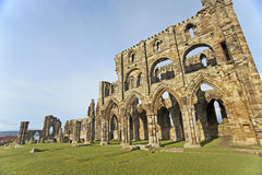 Ancient english abbey on the coast Royalty Free Stock Photography