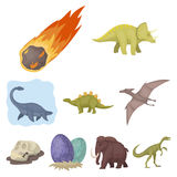 Ancient extinct animals and their tracks and remains.   Stock Photo