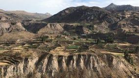 Pre-Inca farming terraces stock video