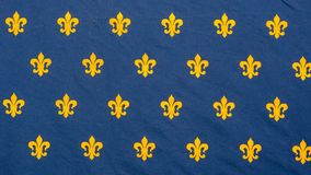 Ancient flag of France kingdom. Composed of the fleur-de-lis or flower-de-luce. I is a stylized lily that is used as a decorative design or symbol. Many of the Royalty Free Stock Photography