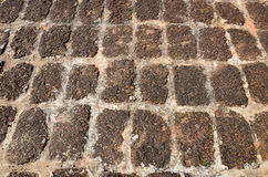 Ancient floor laterite stone Royalty Free Stock Images