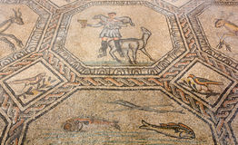 Ancient Floor Mosaic in the Basilica of Aquileia Royalty Free Stock Photography
